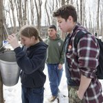Meanwhile in Montreal: Mohawk students learn to make maple syrup