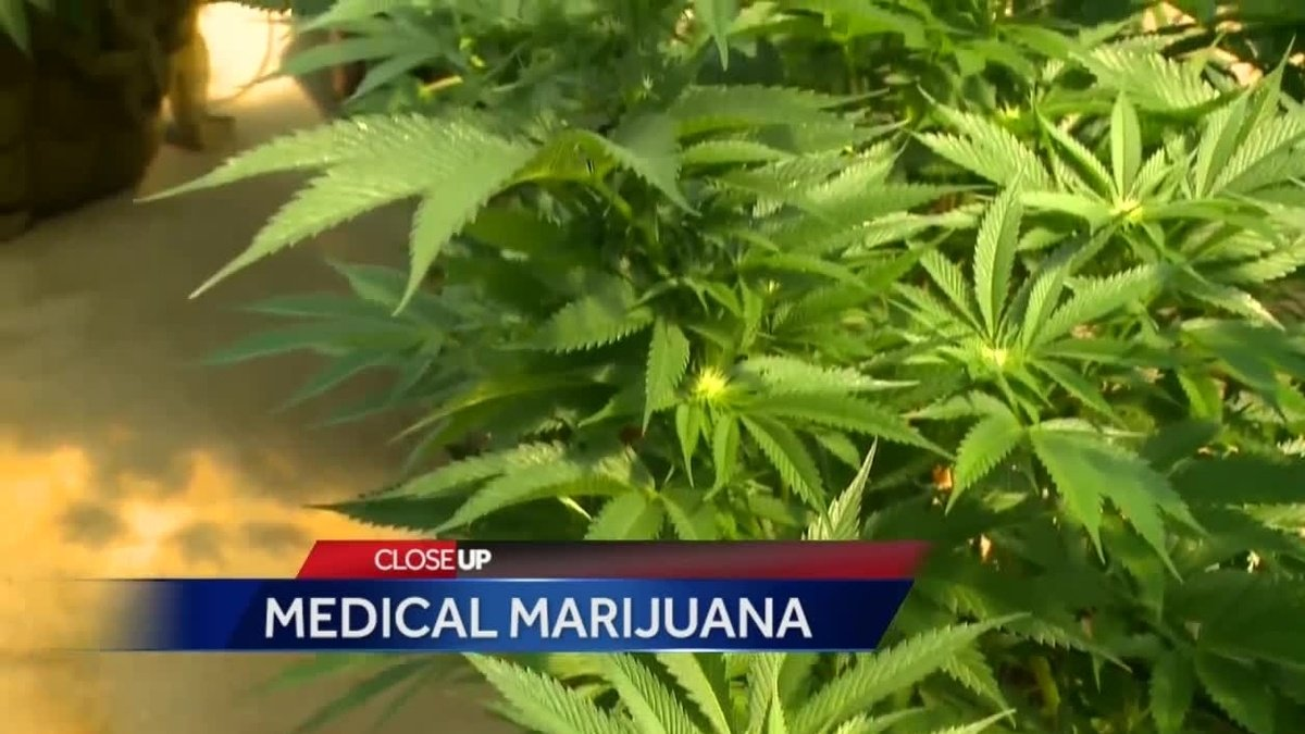 Medical marijuana maker seeks dispensary in western Iowa