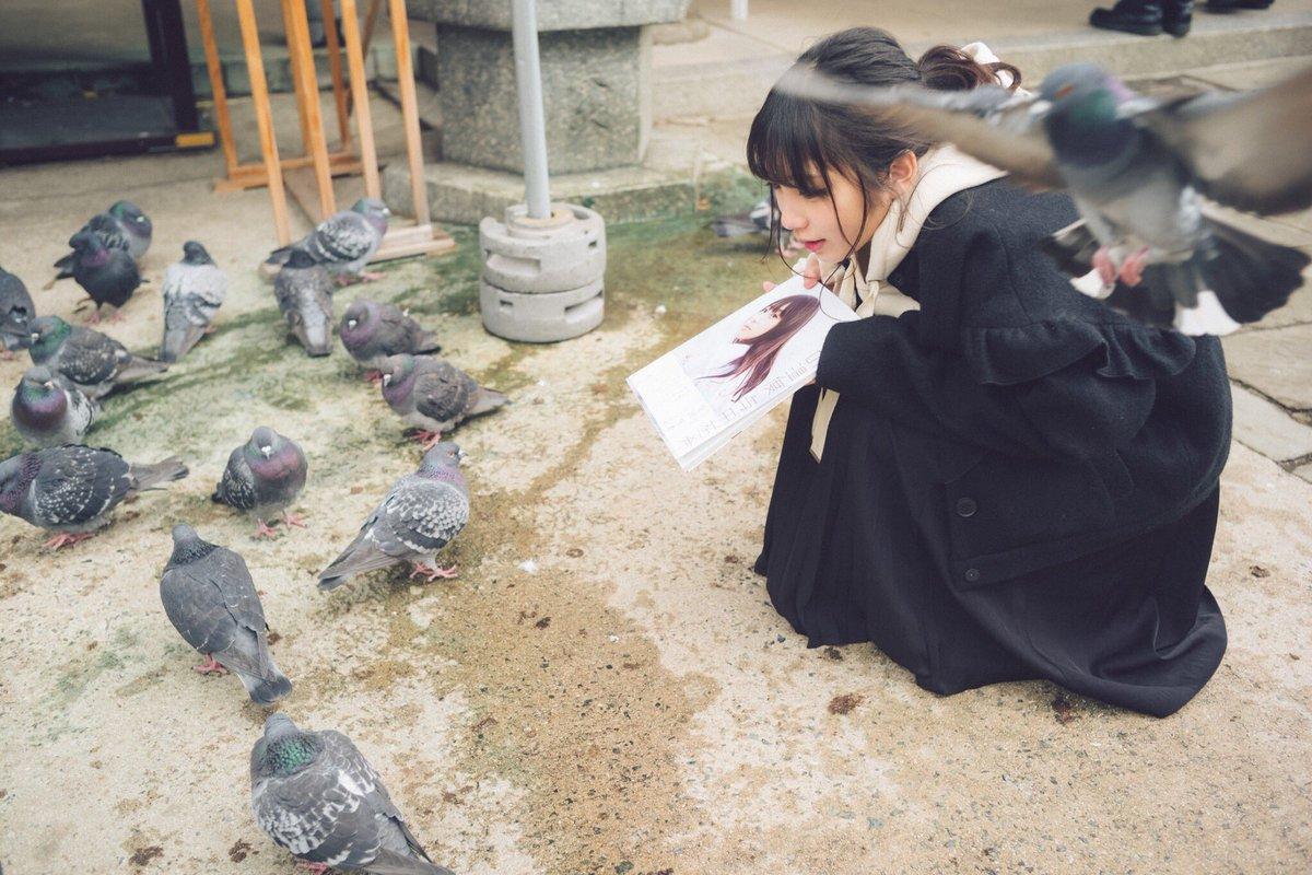 七瀬さんって、太った鳩が好きやったよね⁉️ 太った鳩にも『日向の温度』見せる!!!  #与田祐希 #与田ちゃ...