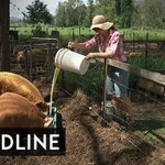 The 'Invisible Farmer' who saved the family farm