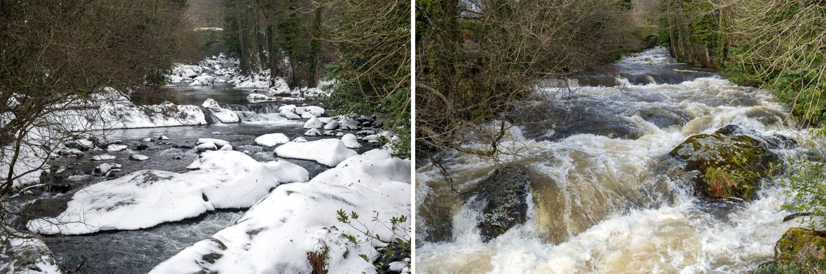 test Twitter Media - What a difference 24 hours makes... Snow and ice-cold water gives way to melt-water and greenery. #Ivybridge, River #Erme  #BeastFromTheEast #StormEmma2018 #Snow #Spring https://t.co/kzFxYiX24x