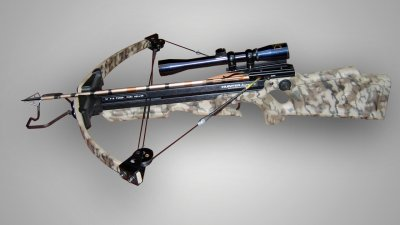 Psychologist: Boy in crossbow killing can berehabilitated