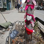 New York City's tree sweaters to stay in place