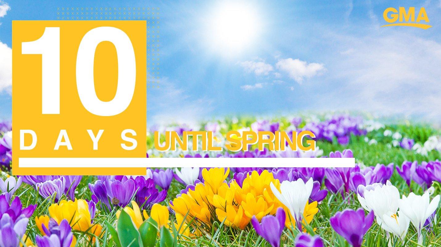 ������Only 10 days until Spring! ������ https://t.co/lZ2J71XlWQ