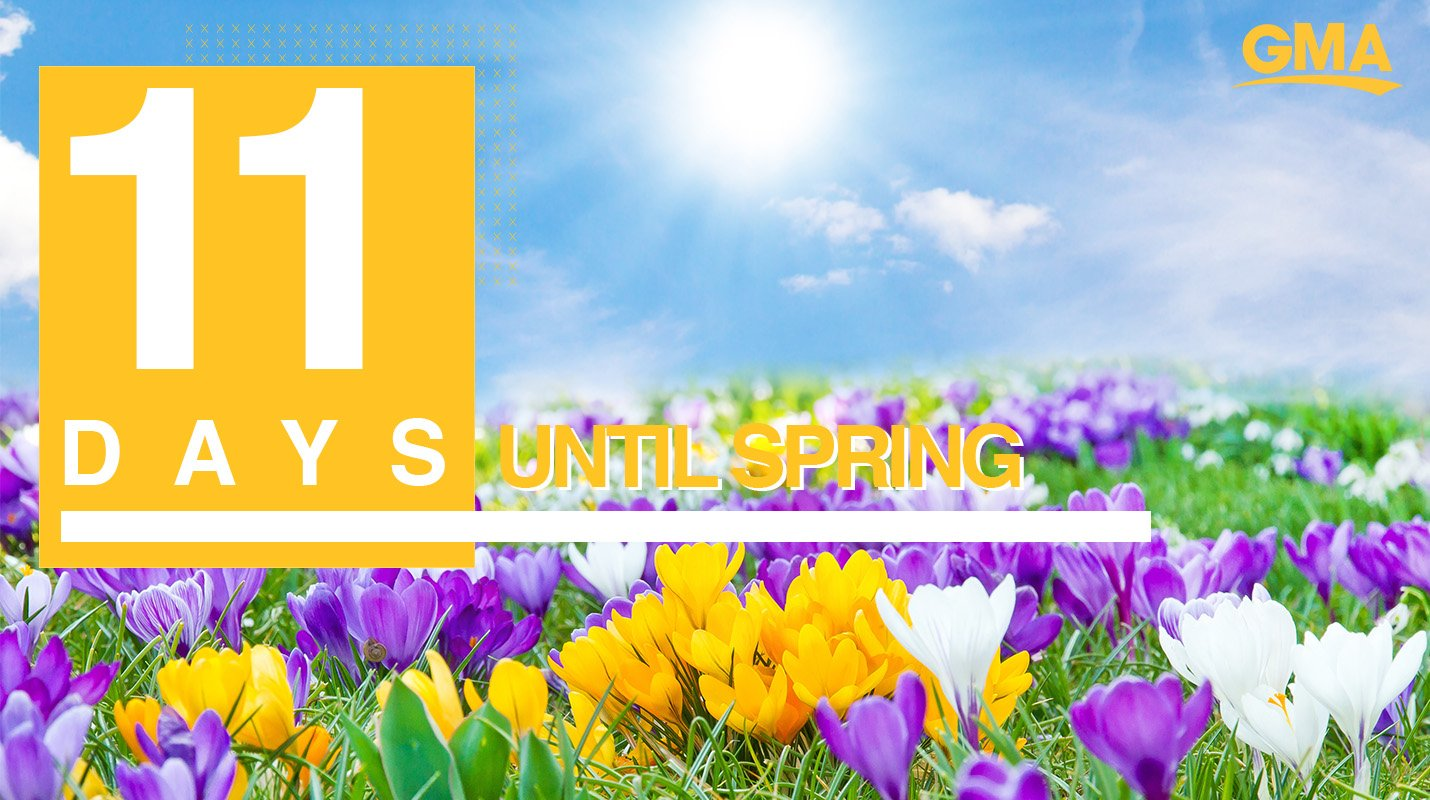 ������Only 11 days until Spring! ������ https://t.co/eEKVNigl5A