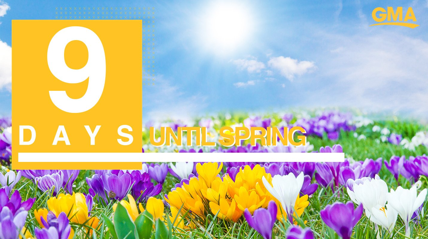 ������Only 9 days until Spring! ������ https://t.co/c7ReUiIswZ