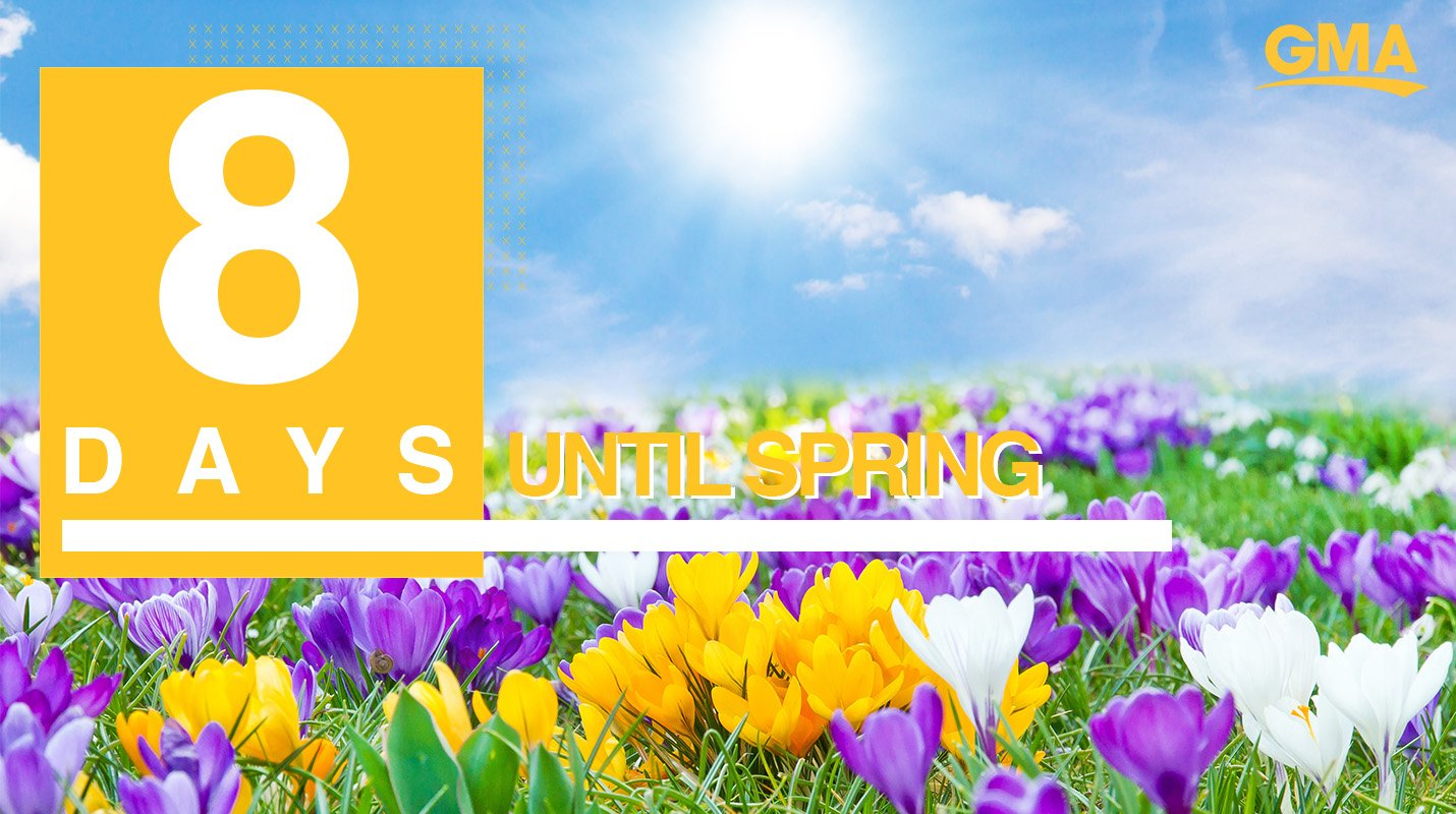 ������Only eight more days until Spring! ������ https://t.co/CZMtI5TOUK