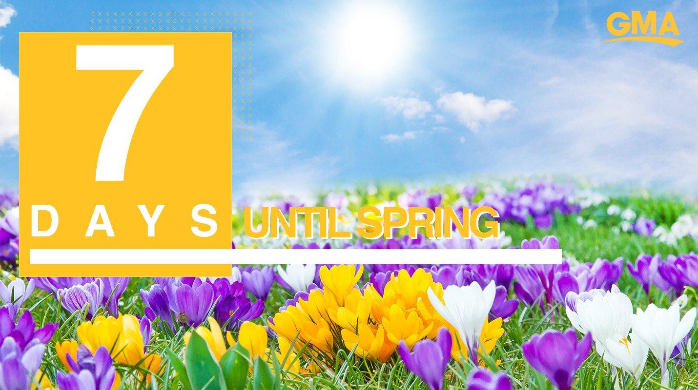 ������Only seven more days until Spring! ������ https://t.co/5SktDhT2zy