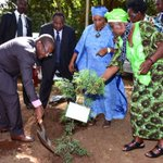 Frontal lead: Ministry of Environment kicks off national tree planting campaign