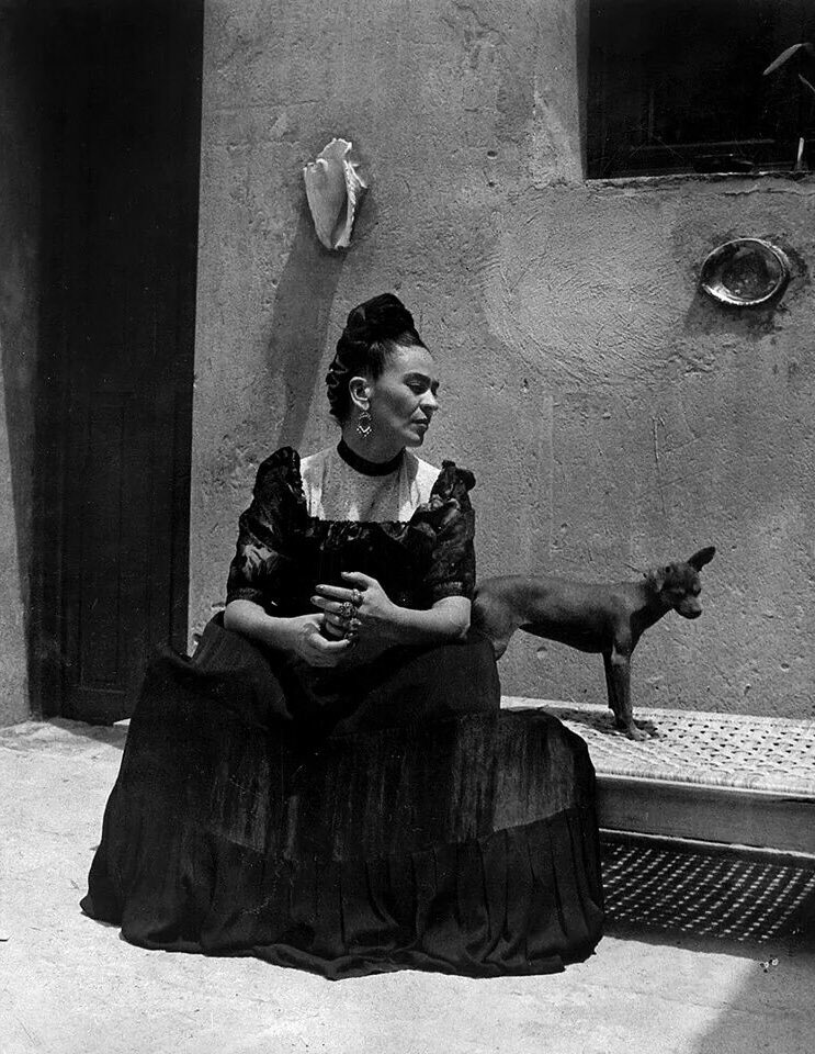 """""""You deserve a lover who takes away the lies and brings you hope, coffee, and poetry."""" Frida Kahlo. https://t.co/41jXvGAcoh"""