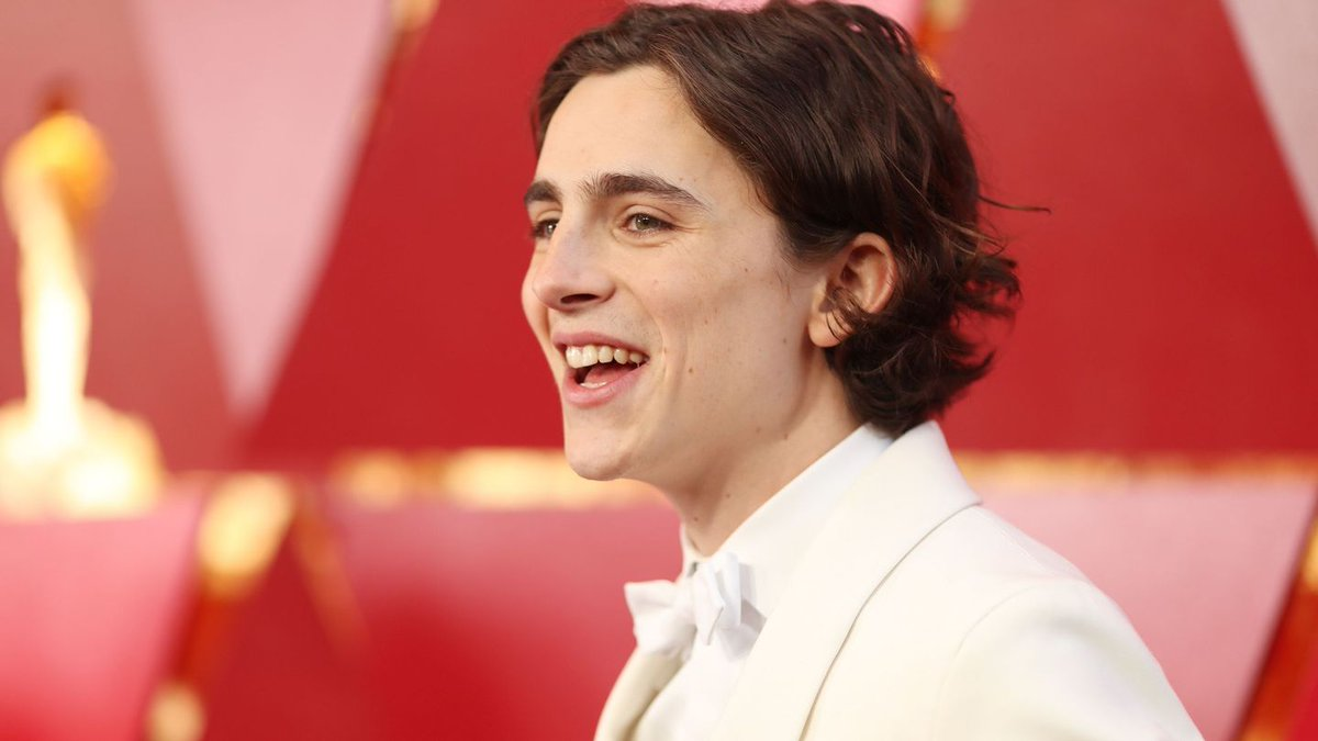 All The Times You Fell In Love With Timothée Chalamet This Awards Season