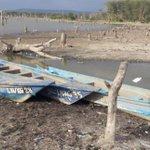 Environmentalists alarmed as Lake Naivasha dries up