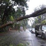 Rains wreak havoc, leaves ten dead among them five school children