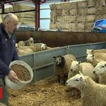 Brexit: Tredegar farmer urges certainty over funding