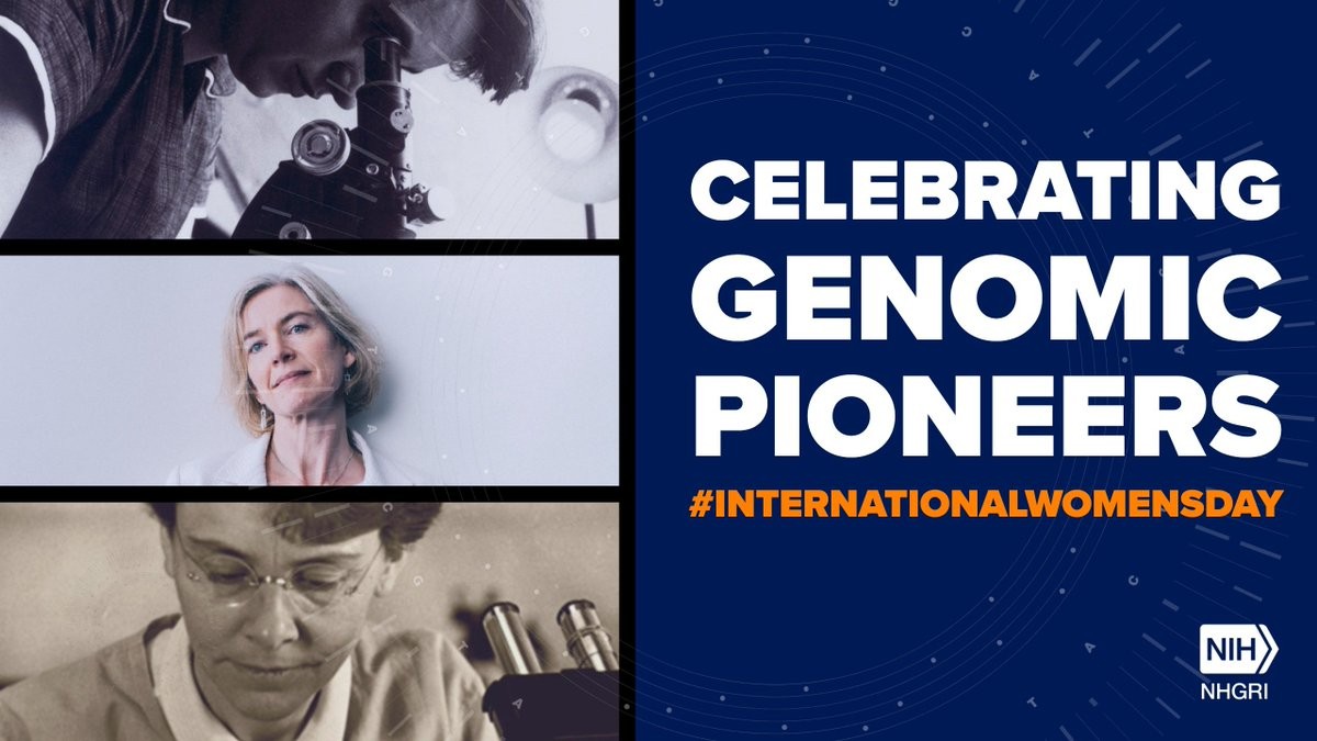 test Twitter Media - In honor of #InternationalWomensDay, NHGRi highlights contributions by Rosalind Franklin, Jennifer Doudna and Barbara McClintock. @doudna_lab #genomics https://t.co/goShsZCMPs