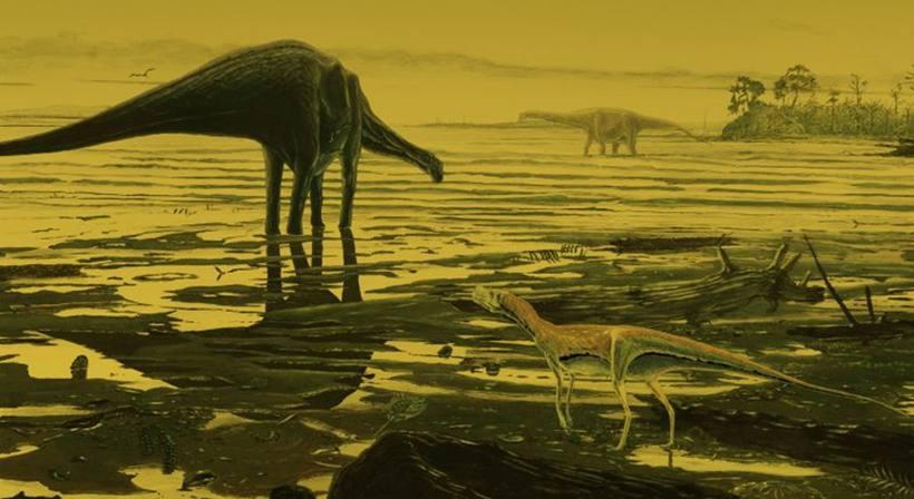 Terra enfrenta primeiro risco de extinção desde os dinossauros, diz estudo