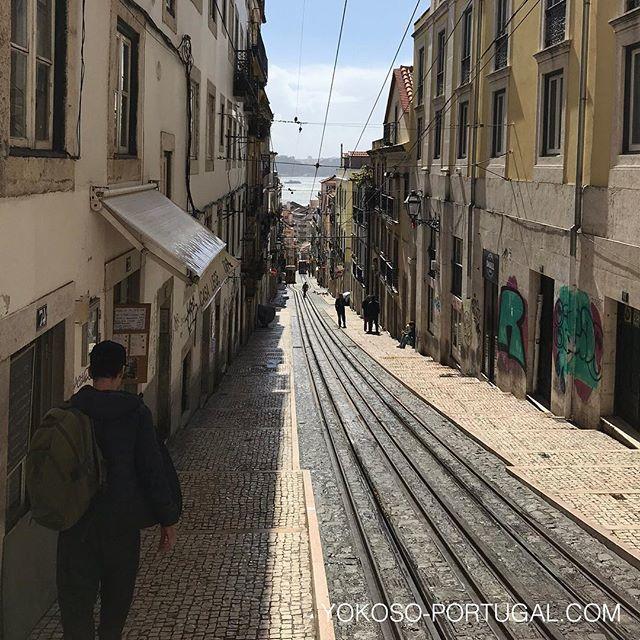 test ツイッターメディア - ケーブルカー・ビカ線。カイス・ド・ソドレ地区とシアード地区の勾配を一直線に結んでいます。 #リスボン #ポルトガル https://t.co/EBMvKCTHhi