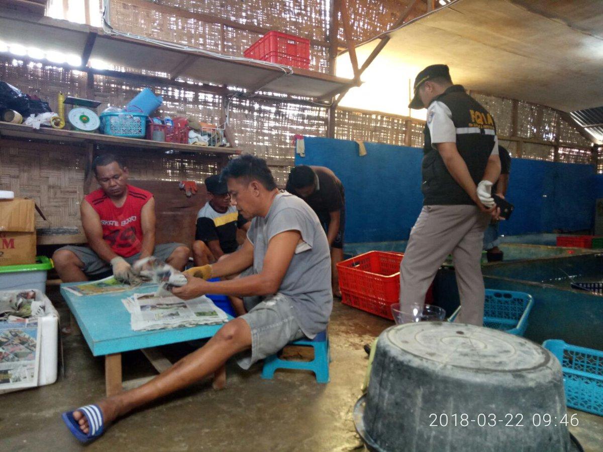 Pemeriksaan dilakukan oleh petugas BKIPM Gorontalo @likihasan2105 #OneHealthKIPM https://t.co/amkxOHv9KM