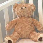 Norton Children's Hospital preserves patients' heartbeat in stuffed animals