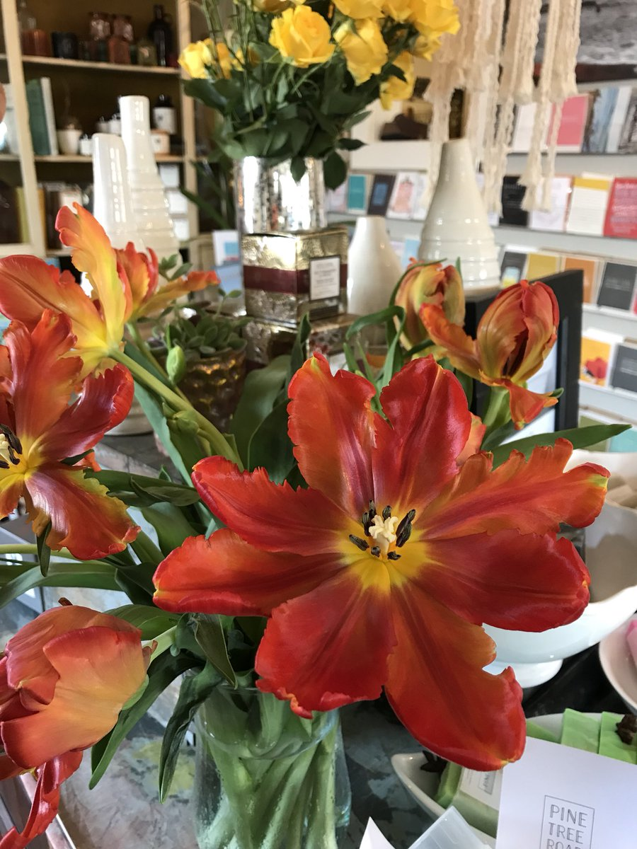2 pic. These parrot tulips are mesmerizing ♥️💚🧡 #flowerporn B72DZrZcqb