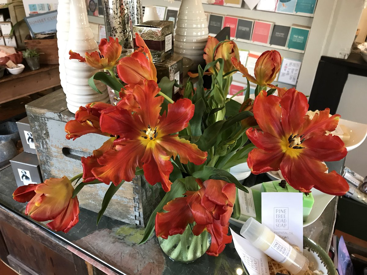 3 pic. These parrot tulips are mesmerizing ♥️💚🧡 #flowerporn B72DZrZcqb