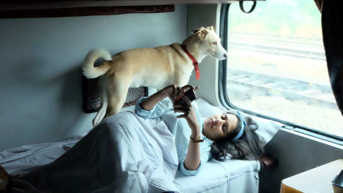 India by train -- with dogs? One couple shares their story https://t.co/nOZjYzw2jh via @CNNTravel https://t.co/qVJH7Cqdy5