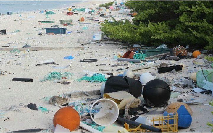 'Shruder' could solve waste problems in Vanuatu rural areas
