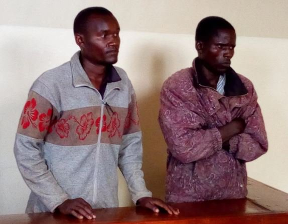 Commanders of gang terrorising Mt Elgon residents arraigned in court