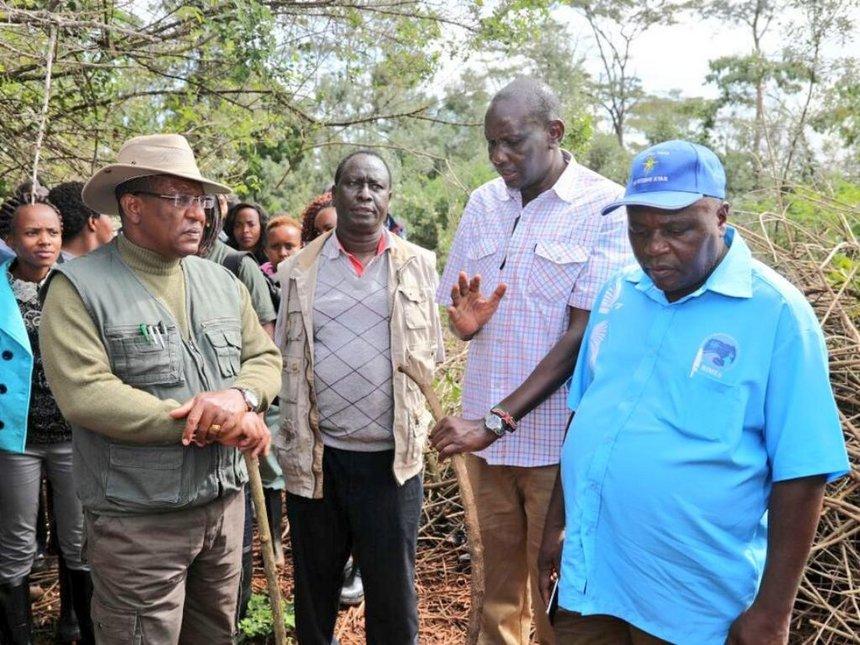 CS Tobiko calls for overhaul of Kenya forest service