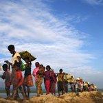Crackdown on Myanmar's Rohingya Muslims 'bear hallmarks of genocide': UN expert