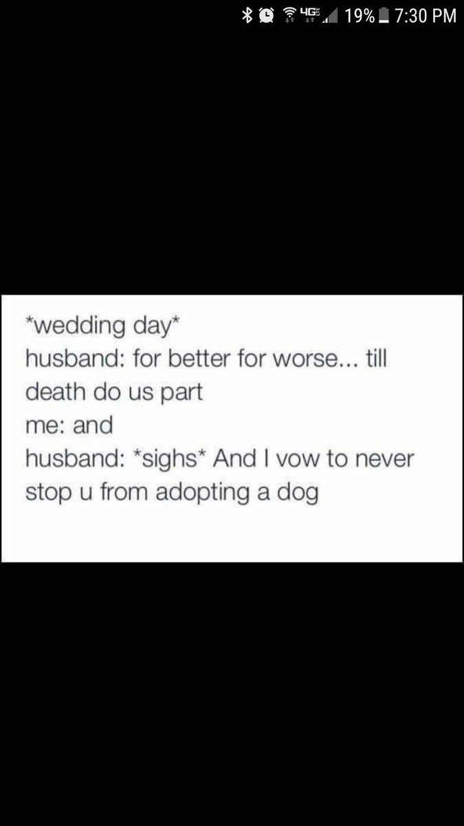 Damnit. Should have put this in my vows. vaUsIDZLq0