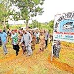 Kagera turning into producer of cassava