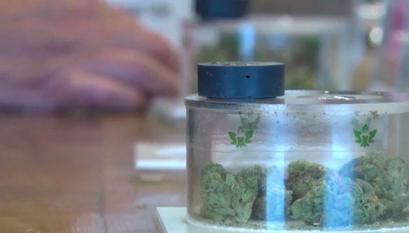 Marijuana-funded scholarship sends kids to college - | WBTV Charlotte