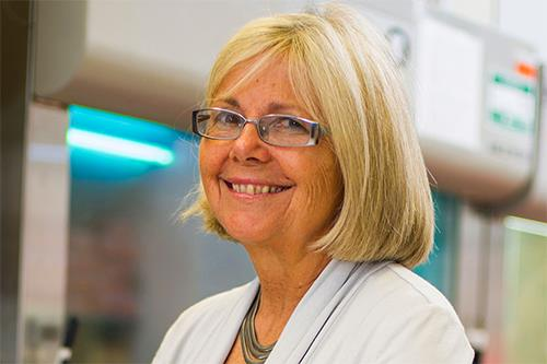 test Twitter Media - Today's lecture by Joan Brugge, Ph.D., co-director, Ludwig Center  Harvard Medical School, on the Role of the TRPA1 Ca2+-permeable Channel  in Oxidative Stress Defenses in #Cancer will be recorded and posted ASAP. https://t.co/ntKayabzxu