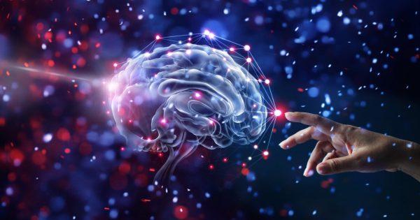 Nectome, la startup que quiere embalsamar tu cerebro para una copia digital https://t.co/uq1r9QNAdd https://t.co/zPbGeDlSRW