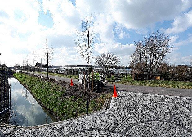 Middenweg Wateringen krijgt 44 nieuwe bomen https://t.co/4bgE90LdY4 https://t.co/e02hZlFbEZ
