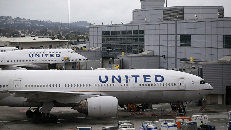Dog mistakenly sent on United plane to Japan reunites with family in Kansas