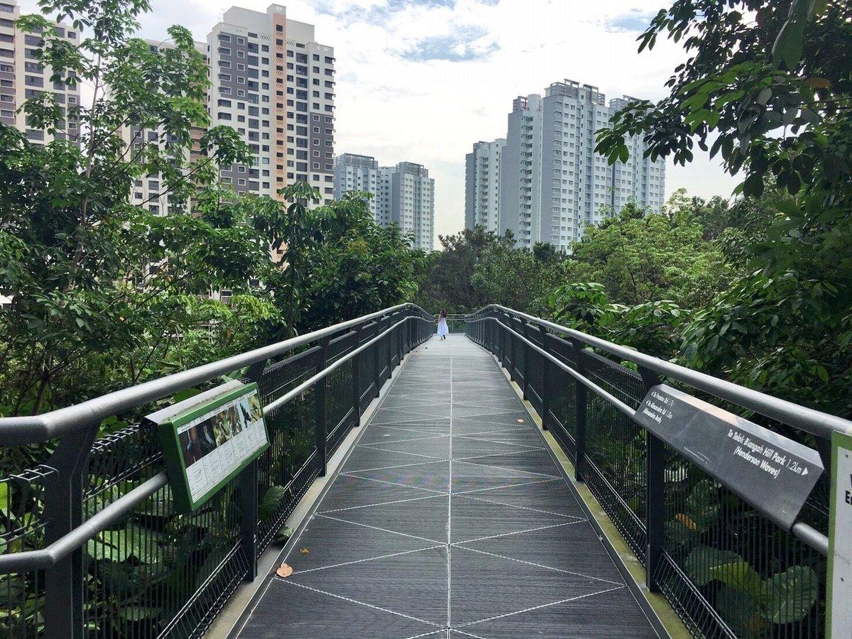 与田ちゃん、どこ⁉️  #与田祐希 #与田ちゃん #日向の温度 #シンガポール #サザンリッジパークブリッジ h...