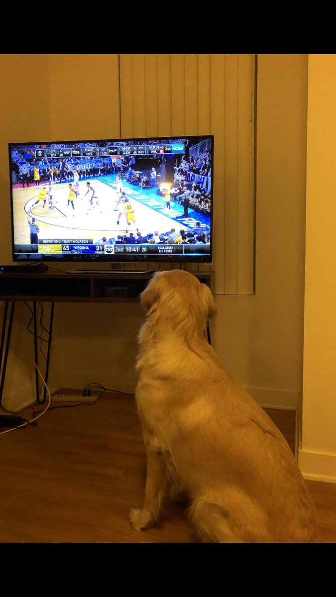 Goldens for the UMBC Retreivers. She's a homer. https://t.co/nyAkNwWCeI