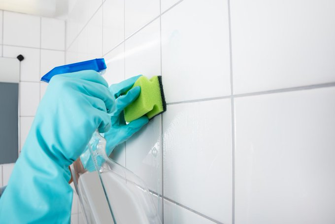 #Alaska - when is it time to have #mold removal? https://t.co/fHa7Fk0s3M https://t.co/tmCRI2S9uh