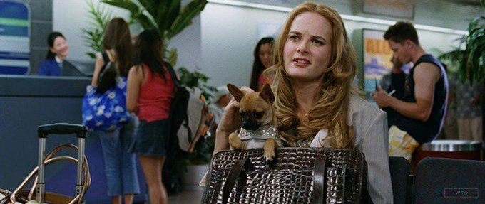 Rachel Blanchard is now 42 years old, happy birthday! Do you know this movie? 5 min to answer!