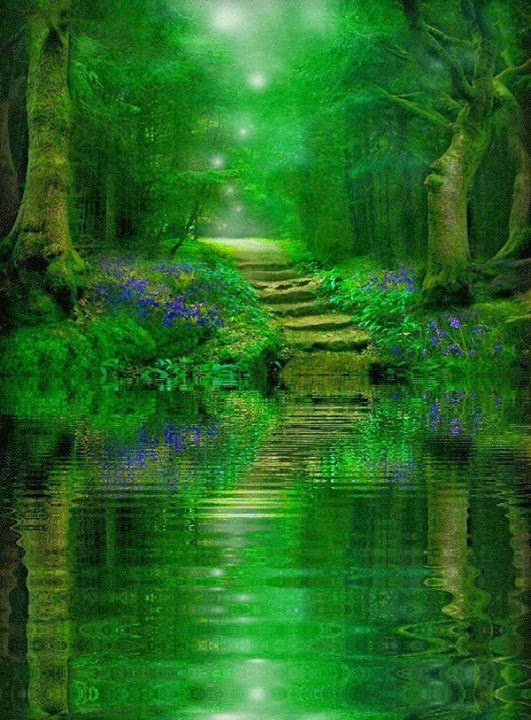 test Twitter Media - What could be more magical than an enchanted forest? I can picture the lovers in my book meeting here. #tenfingerstouching #fantasyfiction #fantasynovel #ellenrothauthor https://t.co/cWmQhMZLvk
