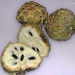 RT : #فاكهه_تحبها_دايما1 من يعرف الفاكهة...
