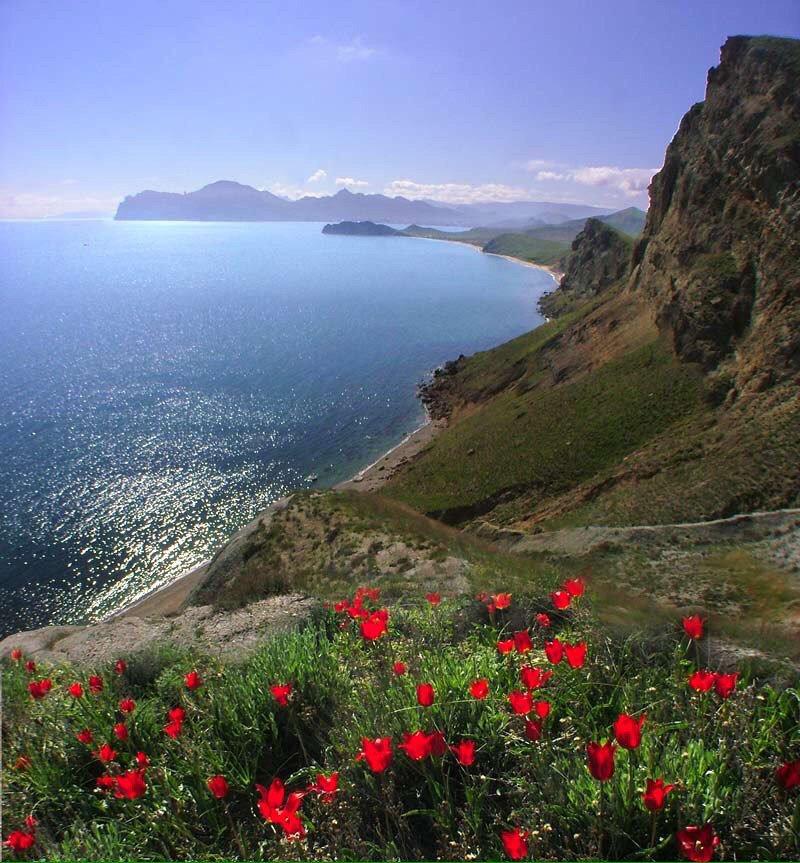 #Crimea