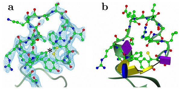 test Twitter Media - High resolution crystal structures of the receptor-binding domain of Clostridium botulinum neurotoxin serotypes A and FA https://t.co/zq0RW1wI0f https://t.co/bH7E4BFkde