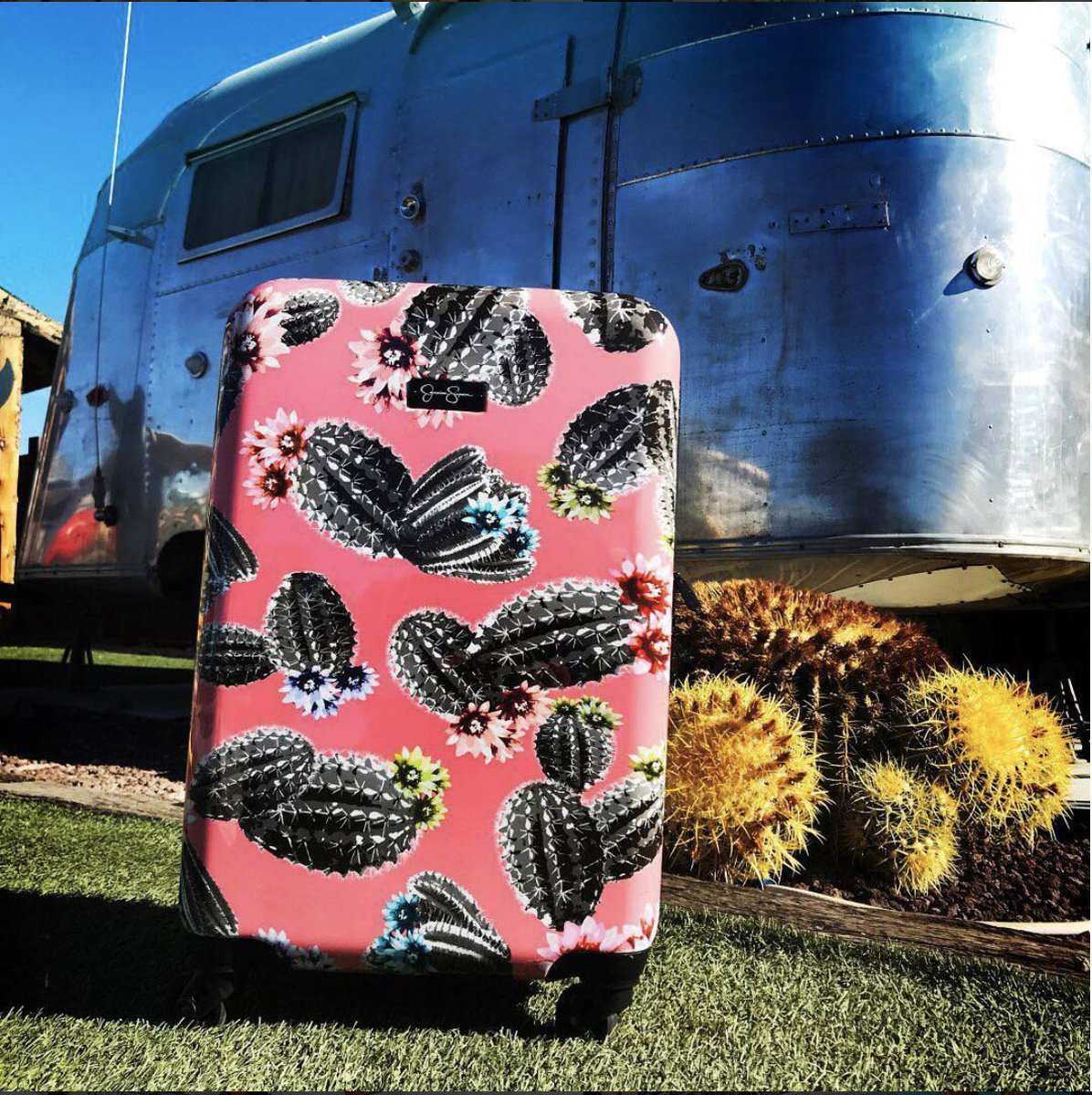 Loving this cactus luggage from @JSCollection  #JessicaSimpsonLuggage  https://t.co/NKx5prP3Gu https://t.co/Mwsdk96Qnl
