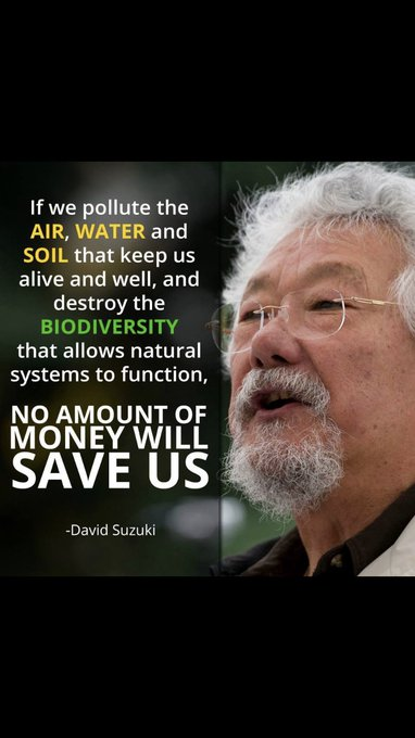 Happy Birthday David Suzuki