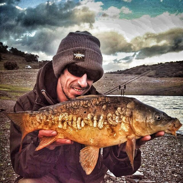 Catching a few in the <b>Storm</b>y weather #carpfishing #dynamitebaits #boilies #GLM and #halibut #