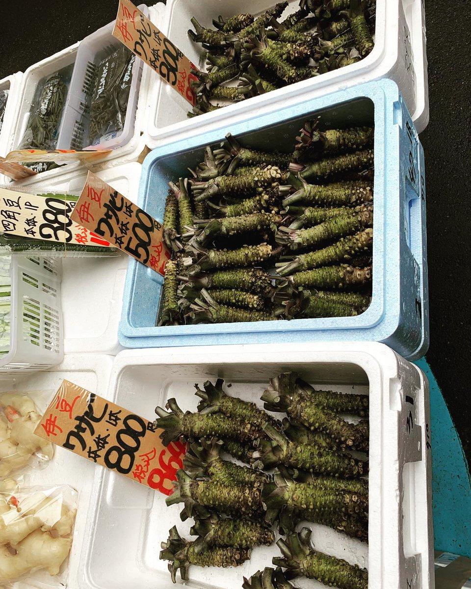 Fish ???? ???????? Market Tokyo  With @timgunn  #MakingTheCut  @amazonprimevideo  #wasabi #seaurchin https://t.co/7eu5t8X7tl
