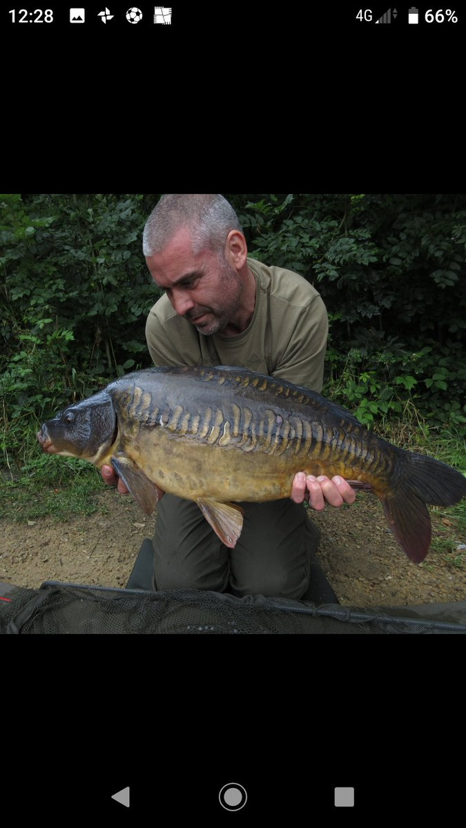 Another minter from yesterday #carp #carpfishing #properjob<b>Popups</b> https://t.co/0qdsvvBdw0